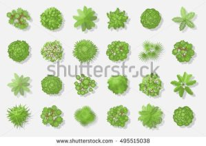 stock-vector-trees-top-view-different-plants-and-trees-vector-set-for-architectural-or-landscape-design-view-495515038