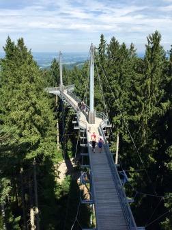 skywalk-allgau-1849474_960_720