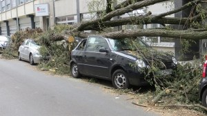 storm-damage-1481036__340